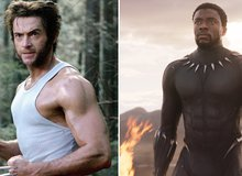 Wolverine đối đầu với Black Panther, 5 lý do chứng tỏ Người Báo sẽ chiếm ưu thế trước Người Sói