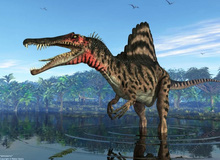 Top 10 loài khủng long ăn thịt nguy hiểm nhất thời tiền sử