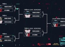 LMHT: QTV Gaming lội ngược dòng ngoạn mục tại nhánh thua, tiến tới Vòng Thăng Hạng VCS Mùa Hè 2020