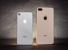 iPhone 7 và 8 cũ rớt giá không phanh, chỉ vài triệu là thừa sức mua