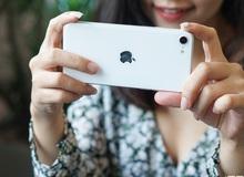 Xiaomi 'cà khịa' iPhone SE 2020 ngay trên trang fanpage chính thức: Thiết kế quá lỗi thời, pin yếu