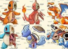 """Bộ tranh """"giải phẫu"""" Pokemon độc nhất vô nhị khiến các fan ruột trầm trồ vì quá đỉnh"""
