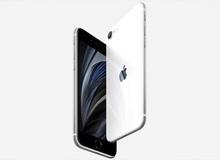 Tim Cook: iPhone SE 2020 nhanh hơn bất kỳ chiếc smartphone Android nào khác