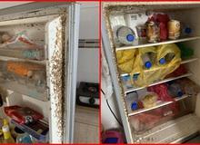 """Mở tủ lạnh sau 4 tháng nghỉ tránh dịch, nữ sinh rùng mình vì """"vương quốc giòi bọ"""""""
