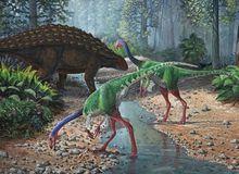 Top 10 điều có thể bạn chưa biết về khủng long, bạn đã biết được bao nhiêu? (P.1)