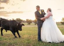 """Đang chụp ảnh cưới bỗng có """"trẻ trâu"""" không mời nhảy vào phá đám, chú rể phải ra tay dọa kẻ phá hoại bỏ chạy """"tóe khói"""""""