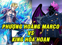 """One Piece: 4 lý do cho thấy Marco là đối thủ """"hoàn hảo"""" của King, liệu Phượng Hoàng có """"bón hành"""" được Khủng Long?"""