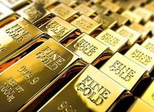 """Hành khách """"não cá vàng"""" bỏ quên túi vàng 3kg trị giá hơn 4 tỷ đồng trên tàu khiến chính quyền ráo riết đi tìm để trả lại"""