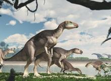 Úc phát hiện ra hóa thạch khủng long biến thành đá quý