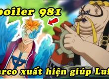 Spoiler One Piece chap 981: Marco xuất hiện chặn đánh băng Big Mom, Chopper chạm mặt Tứ Hoàng