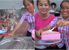 Mải nấu ăn để chó liếm đĩa mà không biết, bà Tân Vlog vẫn dùng lại, chia bánh cho các cháu thưởng thức
