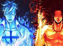"""One Piece: Liệu đây có phải lý do khiến Marco không thể chữa lành vết thương cho Ace và Râu Trắng, dù đang sở hữu trái ác quỷ """"phục sinh""""?"""