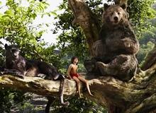 Câu chuyện rừng xanh và 5 bộ phim chuyển thể xuất sắc từ văn học thiếu nhi ai cũng phải xem một lần