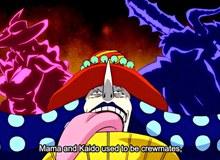 """One Piece: Bên cạnh """"D"""", còn tồn tại một loại ý chí vô cùng mạnh mẽ của những kẻ khó chết nhất """"P"""""""