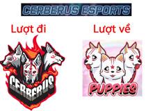 Cerberus Esports thua đau ở trận đầu giai đoạn lượt về VCS - Liệu 'Thần Khuyển' có hóa 'Cún Con'?