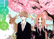 Top 3 bộ Manga có nội dung tình cảm đặc biệt ấn tượng mà fan không thể bỏ qua?
