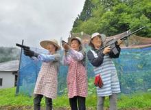 """Ba cụ bà Nhật Bản lập nhóm vũ trang, dùng súng hơi quyết """"khô máu"""" với băng cướp khỉ núi"""