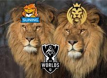 LMHT thế giới 24h qua - 2 chú sư tử Suning và MAD Lions cùng nhau có vé đi đến CKTG