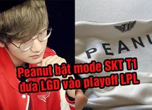 Giúp LGD trở lại playoff LPL sau 4 năm, Peanut được khen hết lời - 'Đậu Nhỏ của SKT T1 trở lại rồi'