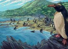 Chim cánh cụt cổ đại cao bằng người từng sống ở lục địa 'mất tích' thứ 8 của Trái Đất