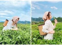 """Chụp bộ ảnh phong cách """"lên núi hái chè"""", cô nàng hot girl khiến cộng đồng mạng xôn xao bởi nhan sắc ấn tượng"""