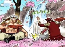One Piece: Phát hiện bằng chứng cho thấy phiến đá Poneglyph từng thuộc quyền sở hữu của Râu Trắng