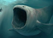 Hội chứng sợ biển Thalassophobia: Nỗi ám ảnh không thể lý giải với đại dương