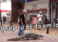 Mất kiên nhẫn với vợ, người đàn ông Nhật Bản nuôi cá sấu để dằn mặt cho biết