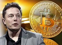 """Bitcoin phá mốc cao nhất lịch sử, Elon Musk """"bơi"""" trong tiền"""