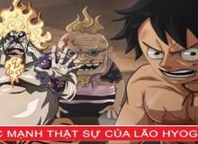 """Giả thuyết One Piece 1007: Chopper bào chế thành công thuốc giải giúp cụ Hyogoro trở lại """"bón hành"""" cho Queen?"""