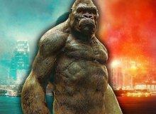 Godzilla Vs. Kong: Những điểm mạnh và yếu chưa từng được tiết lộ của Titan King Kong
