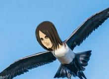"""Các fan Attack On Titan cho rằng """"Mikasa bên cạnh con chim lớn chỉ khiến cô thêm nhớ Eren mà thôi"""""""