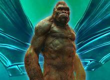 Kong có thể gặp Mothra trong Hollow Earth sau Godzilla vs. Kong?