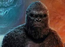 Những vấn đề chưa có lời giải trong Godzilla vs. Kong: Lỗ hổng kịch bản hay tiền đề cho các dự án tương lai?