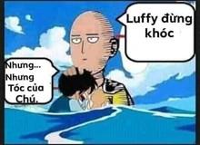 One Piece: Top 5 ảnh chế hot nhất trong tuần, khi Saitama cứu Luffy và Sanji đã làm gì với kiếm của Zoro?