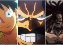 One Piece: 4 đặc điểm giống nhau giữa những người sở hữu Haki bá vương