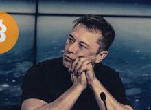 """Bitcoin giảm giá, """"coin thủ"""" Việt thi nhau mắng chửi Elon Musk"""