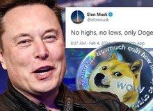 """Bạn gái bảo Elon Musk hay """"trẻ trâu"""" trên MXH, dân tình rần rần phản đối, hài hước bảo rằng cứ nhìn giá Bitcoin là biết"""