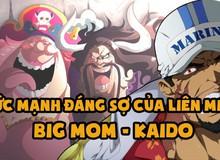 One Piece: Tại sao phía hải quân vẫn ám binh bất động trước liên minh của hai Tứ Hoàng?