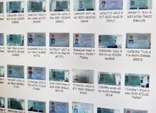 """17GB không chỉ CMND mà rất nhiều thông tin """"nhạy cảm"""" của người Việt bị lộ, game thủ nên sợ dần đi là vừa"""