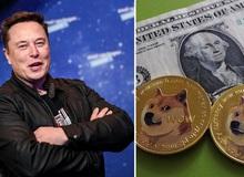 """Suy tính như Elon Musk: """"Đi đêm"""" với cha đẻ Dogecoin ngay từ 2019, đợi 2 năm sau mới bắt đầu bơm thổi giá"""