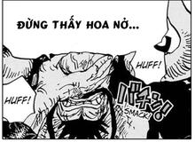 """One Piece: Kaido và bài học dành cho Luffy """"đừng thấy hoa nở mà ngỡ xuân về"""""""