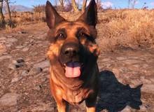 Cộng đồng thương tiếc sự ra đi của River, chú chó linh vật của Fallout 4