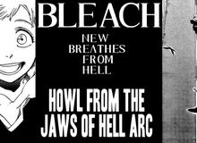 """Bleach: Sau 5 năm tái xuất """"giang hồ"""", chapter mới sẽ là tiền đề cho một loạt phần ngoại truyện với những cuộc phiêu lưu hấp dẫn?"""