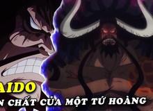 One Piece: Kaido có thực sự xấu xa như chúng ta nghĩ, trọng nhân tài và là kẻ sống có nghĩa khí