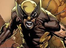"""Mức độ nguy hiểm và những câu hỏi """"fan nào cũng thắc mắc"""" liên quan đến Wolverine"""
