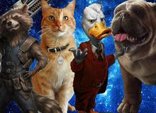 """5 """"siêu động vật"""" bản lĩnh không kém các siêu anh hùng trong vũ trụ điện ảnh Marvel"""