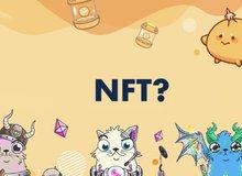 """Những lý do khiến game NFT được dự báo sẽ là trào lưu """"sớm nở tối tàn"""" đối với game thủ Việt"""