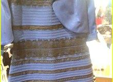 Chiếc váy gây sốt - Game thủ nhìn ra màu gì?