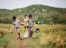 Cảm nhận Tôi Thấy Hoa Vàng Trên Cỏ Xanh – Phim Việt Nam hot trước ngày công chiếu